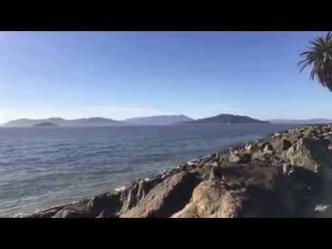 Today at Treasure Island - Top Attraction in San Francisco