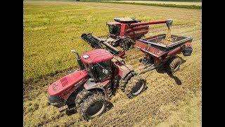 Louisiana Rice Harvest 2017