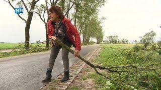 """Ravage na storm Nieuwe Niedorp: """"Hopen dat de bomen nu eindelijk gekapt worden"""""""