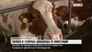 Молоко и «телячьи» дивиденды от инвестиций
