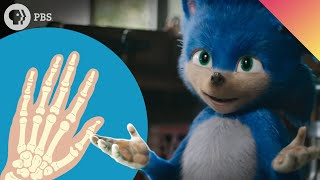 Sonic the Hedgehog Is Why You Have Thumbs!