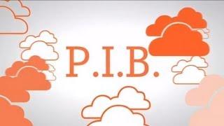 En Naranja: ¿qué es el P.I.B.?