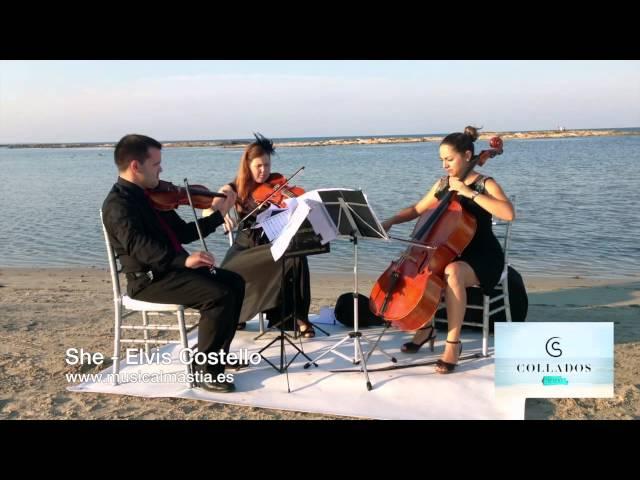BODAS EN LA PLAYA - trio cuerda - La manga, Alcazares, San Javier, San Pedro,Torrevieja, Alicante