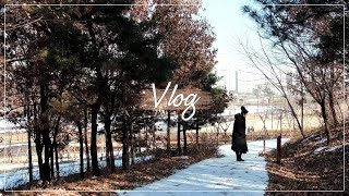 [Vlog] 임산부 브이로그 (20년의 마지막, 연말 …