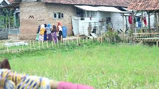 Pondok Pesantren Salaffiyah Dorb Al Fatah Banten desa Onyam