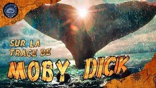 Sur la trace de Moby Dick - CURIOCEAN #3