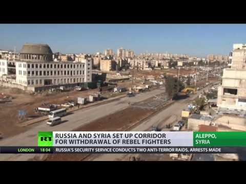 Humanitarian action in Aleppo conflict highly politicized - Red Cross regional director