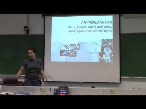 Lecture 4: Phytoplankton – pigments, photo-adaptation, and taxonomy (Part 1)
