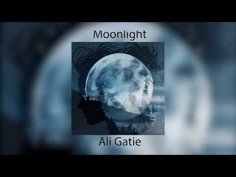 Ali Gatie - Moonlight (Lyrics) Prod Adriano
