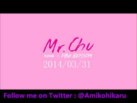 ► A Pink (에이핑크) - MR.CHU *Male Version* ◄