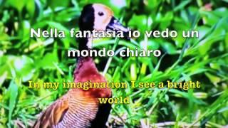 Nella Fantasia (In My fantasy) lyrics - Jakie Evancho
