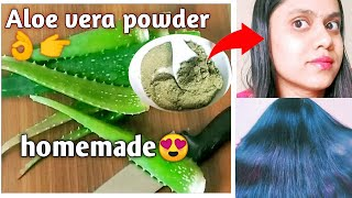 How to Make Aloe Vera Powder for Hair Skin Aloe Vera Powder DIY Leaf Aloe Vera Powder beautytips