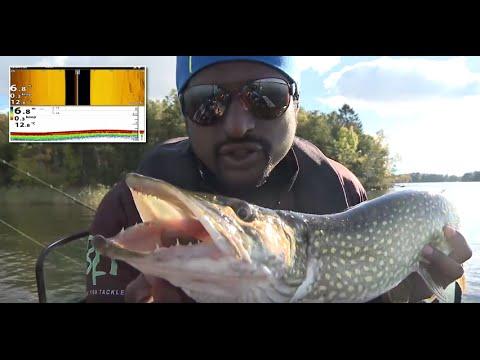 Fishing Live - Pike Fishing in Lake Mälaren