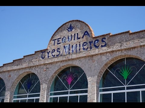 Travel con Miks #tequila in tequila