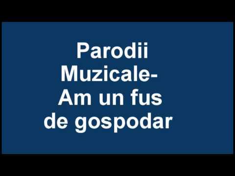 Parodii Muzicale - Am Un Fus De Gospodar