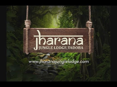 Jharana Jungle Lodge | Tadoba National Park Resorts | Tadoba hotels