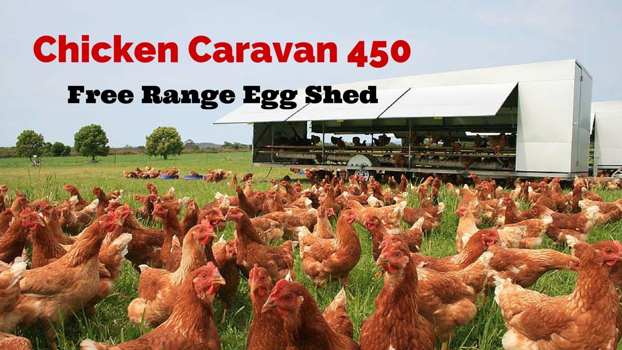 Chicken Caravan 450 Free Range Egg Shed Youtube