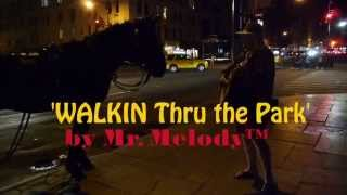 WALKIN Thru The Park - Song To Save The Horse Carriage Industry - Live at Central Park
