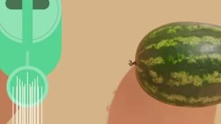 App Saúde: vídeo Visão geral