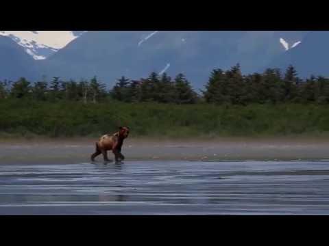 Yakutat Lodge fishing and touring
