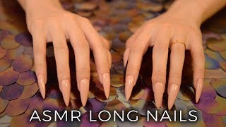 ASMR Table Tapping & Scratching with Long Nails (No Talking)