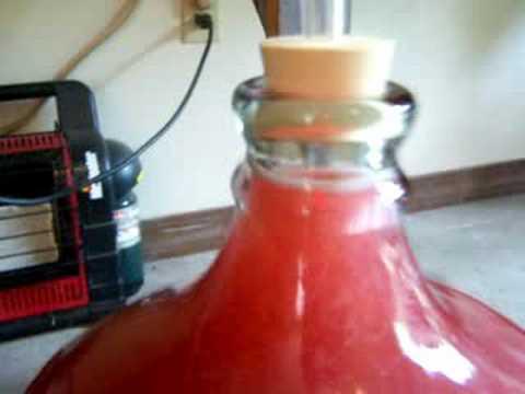 how to make plum wine youtube