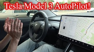 Tesla Model 3 AutoPilot! *How to Use it* Rainbow Road!