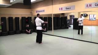 Kenpo Six - technique 1