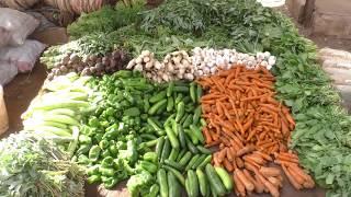 سنابل السودان : هل ترغب ان تكون لك مزرعة في غرب ام درمان( 2)