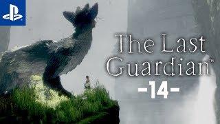 Silna więź #14 The Last Guardian | PL | Gameplay | Zagrajmy w