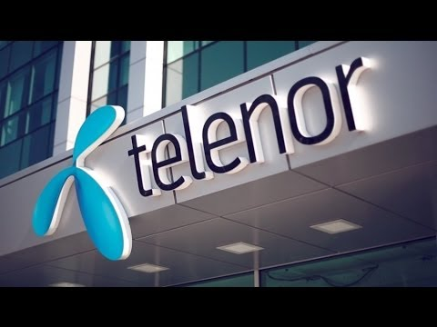 Serbia's Largest Investor Telenor Calls for Cutting Red Tape to Dial in FDI