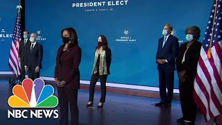 Analysis: Biden Cabinet Picks 'Collegial,' 'Not A Team Of Rivals' | NBC News