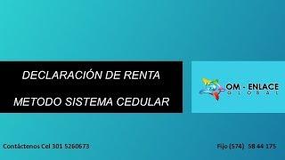 DECLARACION DE RENTA SISTEMA CEDULAR