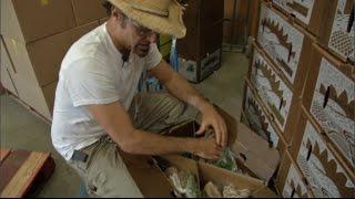 Growing California video Series: Farm to Folks