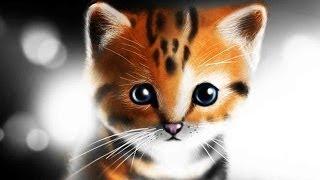 speed painting kitten(рисунки котят)