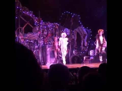 The Jellicle Ball | Cats The Musical - Broadway Revival