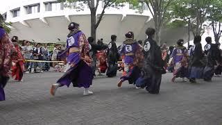 2017年の原宿よさこい祭り。NHK前ストリートにて百物語の演舞を撮影しました。