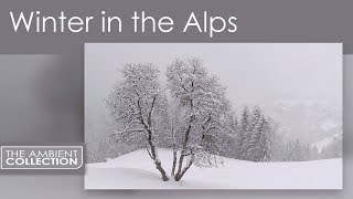 Nature DVD Of Four Seasons - Vivaldi Four Seasons Scenes From The Alps In Winter