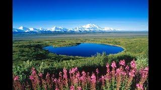 На просторах Аляски 1992