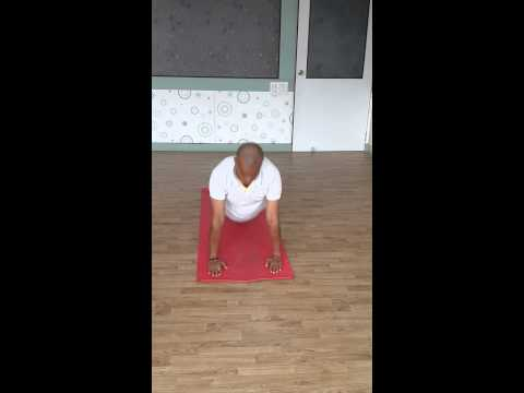 Different Styles of Indian Vedic Classical Yoga Surya Namskara Assanas
