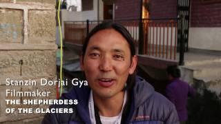 diff 2016 director speaks stanzin dorjai gya film the shepherdess of the glaciers