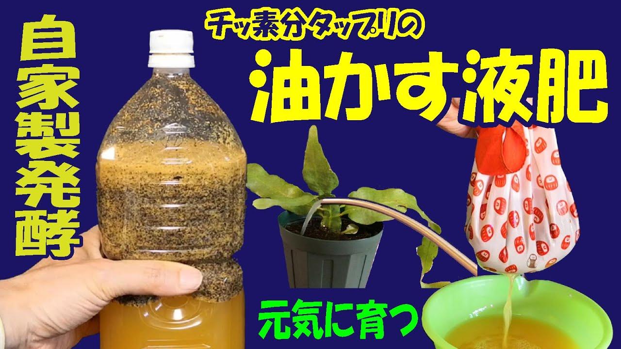 油かす レシピ