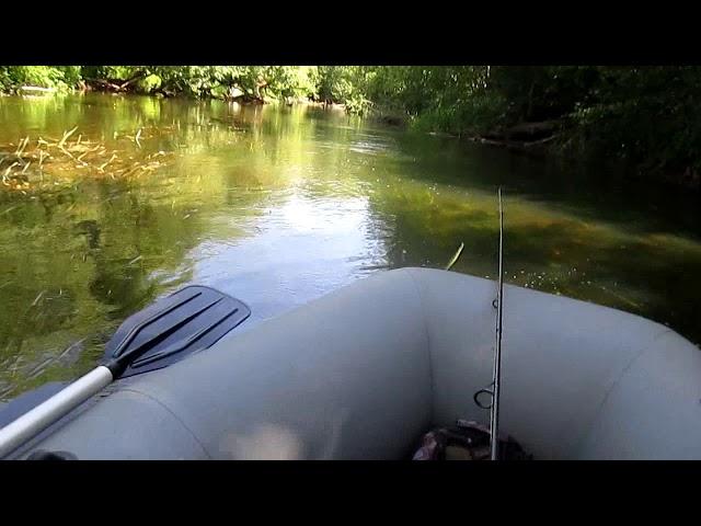 Заплыв по небольшой реке