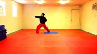 Dan Gun Tae Kwon Do Form - Slow