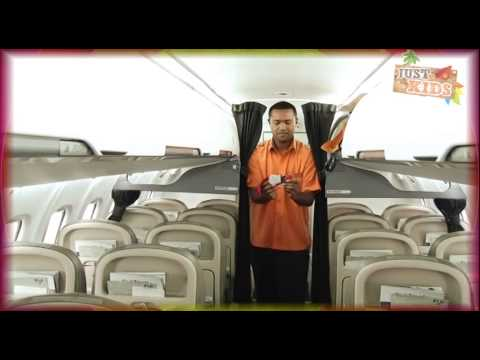 Fiji Link Flight Attendant
