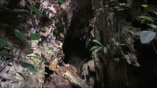 Belize - Civilizacoes Antigas - Monark Turismo - www.monark.tur.br