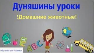 Дуняшины уроки  - Изучаем домашних животных! Развивающие мультики для детей (4 серия)