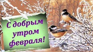 С ДОБРЫМ УТРОМ ФЕВРАЛЯ!
