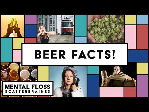 Beer Facts and Life Hacks! - Mental Floss Scatterbrained