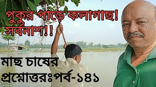 Question and answer on fish culture#Part-141পকরপড় কলগছ!সরবনশ!!#Abeed Lateef